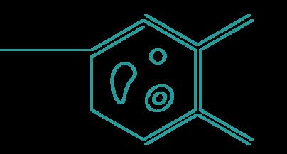Academics | Certificates & Certifications Biotechnology